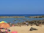 オアフ島ノースショアププケアビーチ-2.JPG