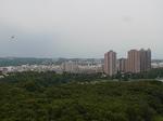 中興塔(Chunghsing Pagoda)から望む高雄市街地.JPG
