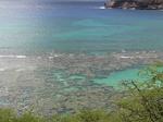 展望台から眺めるハナウマ湾.JPG