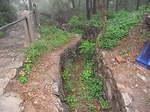 203高地の大日本帝国軍塹壕跡.JPG