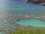 展望台からのハナウマ湾シュノーケリングポイント.JPG